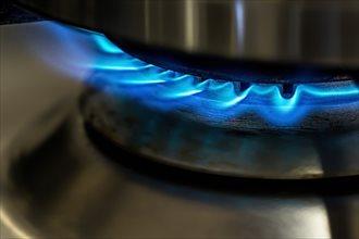 都市ガス自由化も要チェック
